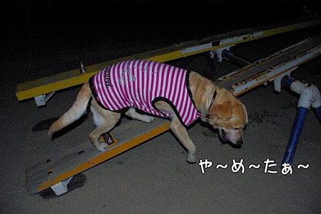 s-myu2009_0330(142)