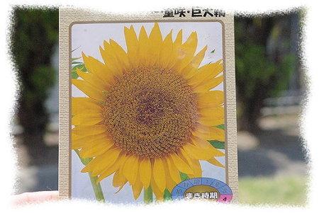 s-myu2009_0429