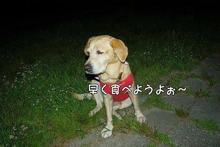 s-myu2009_0513(030)