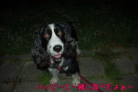 s-myu2009_0513(029)
