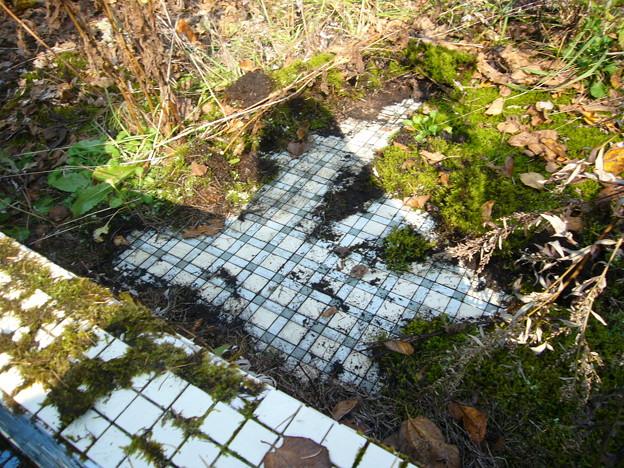 Photos: 洗い場のタイル