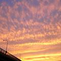 写真: 夕焼け縦撮