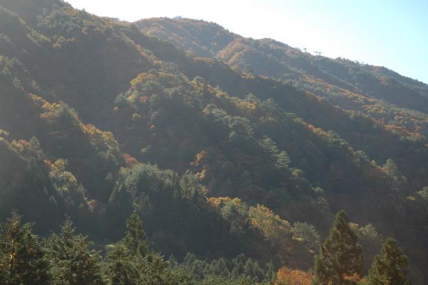 色づく山の背