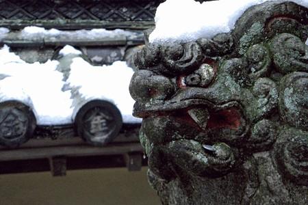 雪の金刀比羅1