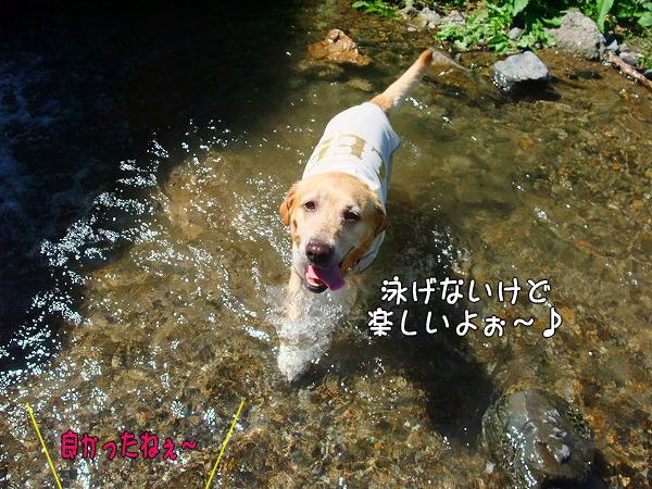 s-2008_0726myu0013