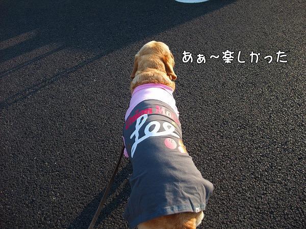 s-2008_0813myu0112