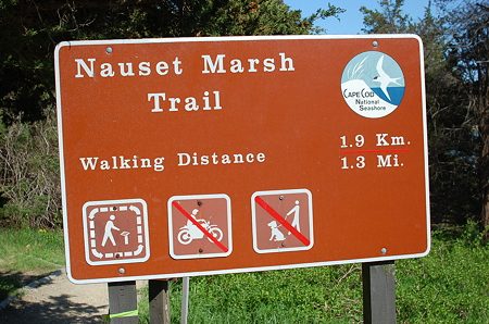 Cape Cod-Nauset Marsh Trail