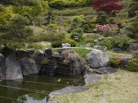 ミニ庭園っぽい所です