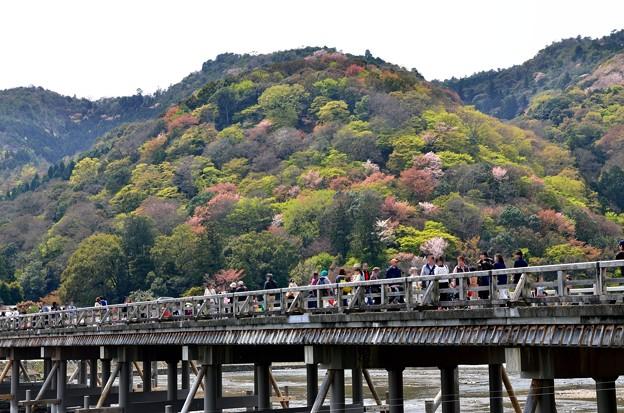 2013_0412_122156_渡月橋