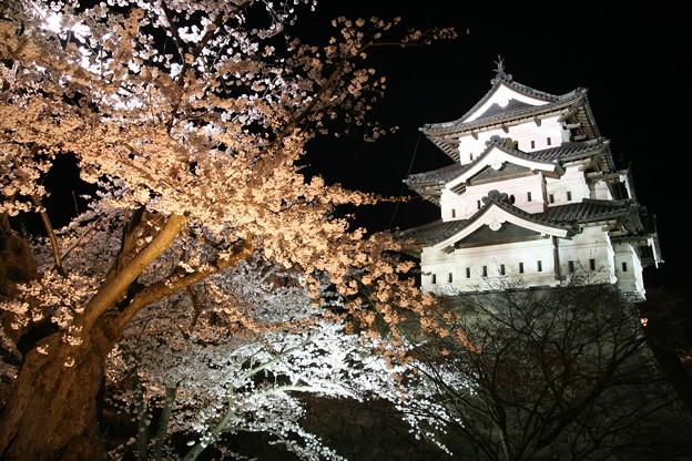 Photos: 弘前29