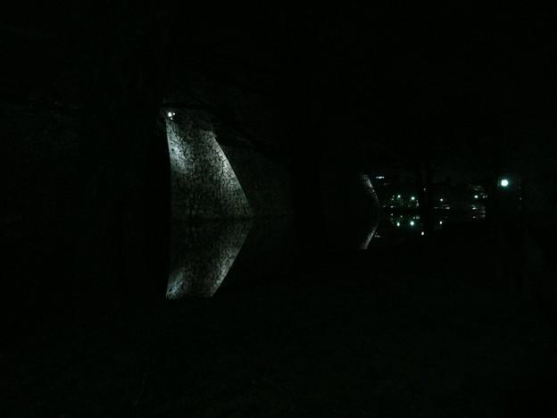 姫路城 花あかり 2009/4/3