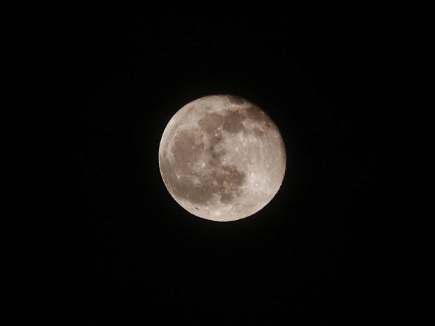 2014年4月16日の月 IMG_8754