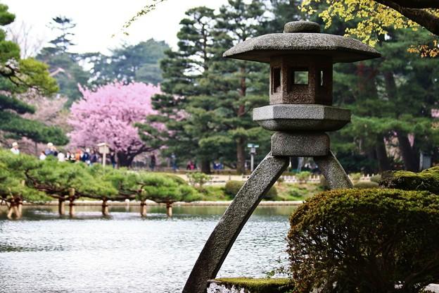 春の兼六園 IMG_8905