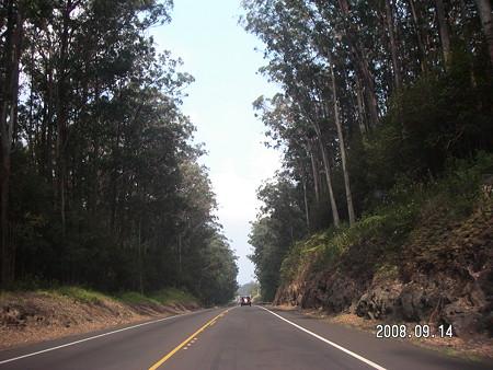 highway 19 north bound