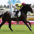 Photos: イスラボニータ 返し馬(13/06/02_新馬戦)