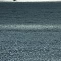 写真: 海原