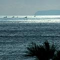 写真: 相模湾