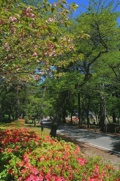 千人塚公園5