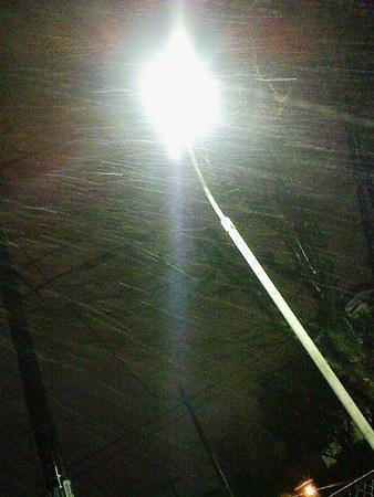 090303-雪降ってます (1)