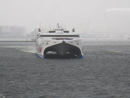 090306-ナッチャン 夕
