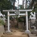 写真: 富士見櫓跡1