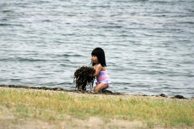 Photos: 合浦公園・浜辺の清掃01-12.07.04