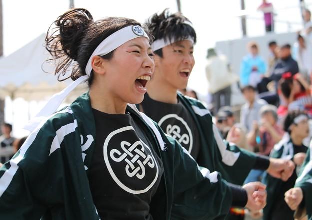 2014-04-27 あぽろん 宝03