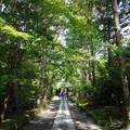 Photos: 寿福寺 (神奈川県鎌倉市扇ヶ谷)