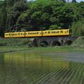 黄色い電車、三連アーチ橋の「めがね橋」を渡る。@三岐鉄道北勢線楚...