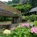 Photos: 風鈴まつり4260614c09