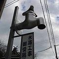 Photos: 屋根より高い~♪