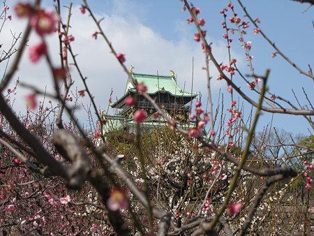梅林から大阪城2
