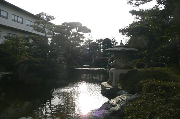 Photos: 美松お庭