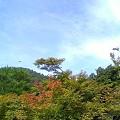 Photos: 北山
