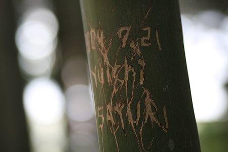 2009.03.07 報国寺 竹に落書