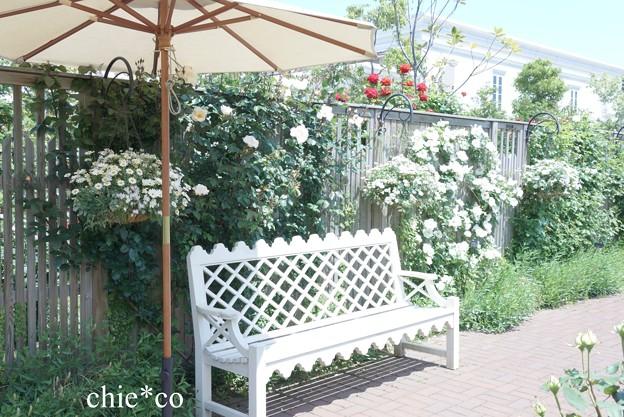 横浜 English Garden-049