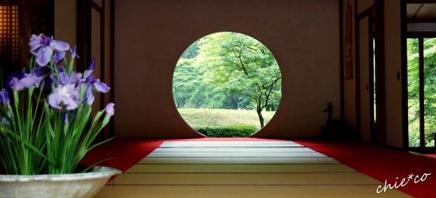 季節をうつす円窓・・