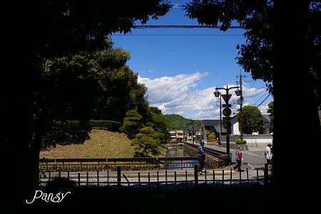 樹の間から見えた風景・・足利さんぽ~5