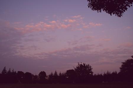 空~ トワイライト