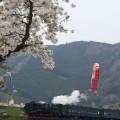大井川鉄道・寸又峡温泉88