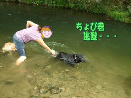 川遊び  逃避