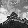 写真: 会津鶴ヶ城