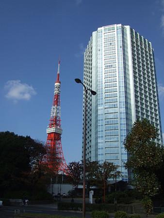 東京タワーとビル1113w