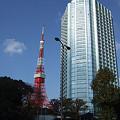 写真: 東京タワーと高層ビル。(11/13)