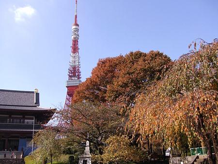 紅葉の東京タワー1113s