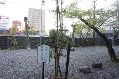 興徳寺 - 08