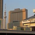 写真: 東京スカイツリーと江戸東京博物館