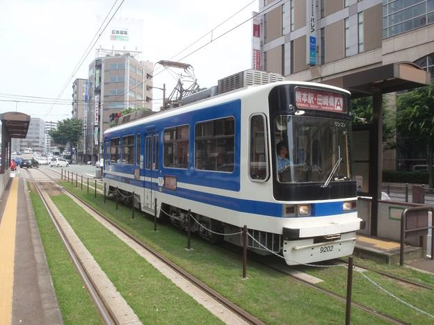 Kumamoto 9202, on lawn planted track