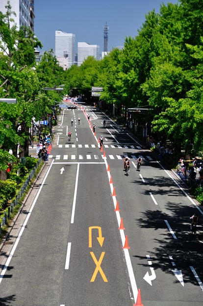 2014世界トライアスロンシリーズ横浜大会