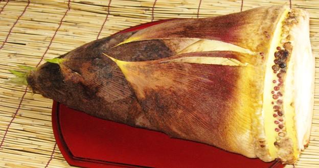 たけのこ2009~この季節、旬の「若竹煮」が美味~